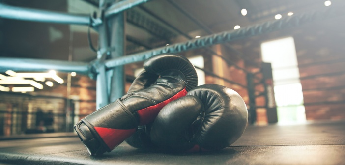 Boxer's £300 fine lenient, says Allianz fraud manager